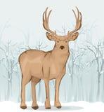 Illustrazione della renna Fotografie Stock Libere da Diritti
