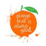 Illustrazione della siluetta arancio isolata della frutta Immagini Stock