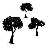 Illustrazione della siluetta di vettore della raccolta dell'albero Immagini Stock