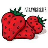 Illustrazione delle fragole Fotografia Stock