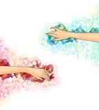 Illustrazione delle mani femminili con i fiori Illustrazione Vettoriale