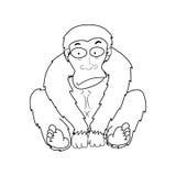 Illustrazione delle scimmie Immagine Stock