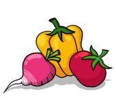 Illustrazione delle verdure Fotografia Stock