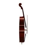 Illustrazione dello strumento musicale 3d del violoncello illustrazione vettoriale