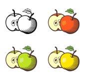 Illustrazione di Apple Fotografia Stock