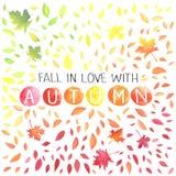 Illustrazione di autunno con le foglie eterogenee Fotografia Stock