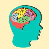 Illustrazione di carta del cervello Immagine Stock