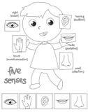 Illustrazione di coloritura del ragazzo di cinque sensi royalty illustrazione gratis