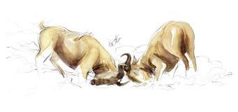 Illustrazione di combattimento più wildebest Fotografia Stock