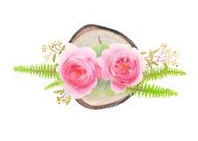 Illustrazione di disegno floreale element Immagine Stock Libera da Diritti