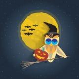 Illustrazione di Halloween con il gufo in black hat su una scopa di streghe Fotografia Stock
