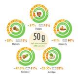 Illustrazione di Infographic di valore dei grassi in cinque tipi di dadi Fotografia Stock