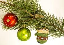Illustrazione di Natale Branch Immagini Stock