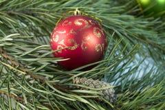 Illustrazione di Natale Branch Immagini Stock Libere da Diritti