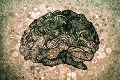 Illustrazione di scarabocchio del cervello con le strutture illustrazione di stock