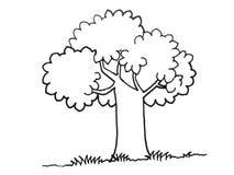 Illustrazione di un albero Immagini Stock Libere da Diritti