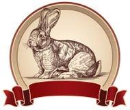 Illustrazione di un coniglio nel telaio Fotografia Stock Libera da Diritti