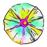 Illustrazione di un fiore di ipomea con un modello del semitono Fotografia Stock