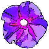 Illustrazione di un fiore porpora con un modello del semitono Fotografia Stock Libera da Diritti
