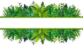 Illustrazione di un'insegna tropicale della foresta pluviale Immagini Stock Libere da Diritti