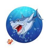Illustrazione di un inseguimento dello squalo il poco pesce Immagine Stock