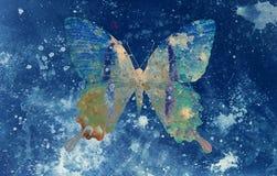 Illustrazione di una farfalla di colore, medium misto, backgrou blu royalty illustrazione gratis