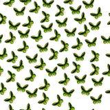 Illustrazione di una farfalla variopinta Immagine Stock Libera da Diritti