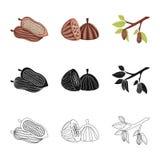 Illustrazione di vettore di alimento e del segno squisito Raccolta di alimento e del simbolo di riserva marrone per il web illustrazione di stock