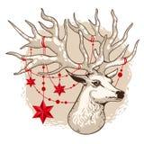 Illustrazione di vettore, carta di festa, testa dei cervi con i bei corni immagini stock libere da diritti