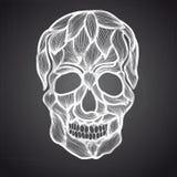 Illustrazione di vettore con il cranio disegnato a mano Immagini Stock Libere da Diritti