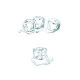 Illustrazione di vettore con il cubetto di ghiaccio illustrazione vettoriale