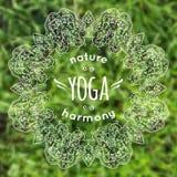 Illustrazione di vettore con la mandala ed etichetta di yoga su erba vaga Illustrazione di Stock