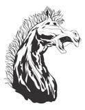 Illustrazione di vettore con la testa di cavallo Immagine Stock Libera da Diritti