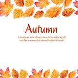 Illustrazione di vettore con le foglie di autunno Immagini Stock Libere da Diritti