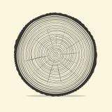 Illustrazione di vettore degli anelli di albero illustrazione vettoriale