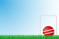 Illustrazione di vettore del campo di erba del croquet Fotografia Stock