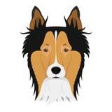 Illustrazione di vettore del cane di Collie Rough royalty illustrazione gratis