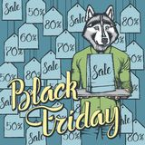 Illustrazione di vettore del cane su Black Friday Fotografia Stock