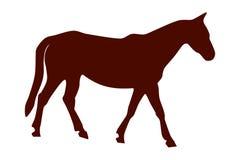 Illustrazione di vettore del cavallo marrone Fotografia Stock Libera da Diritti