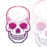 Illustrazione di vettore del cranio su bianco Immagine Stock Libera da Diritti