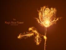 Illustrazione di vettore del fiore rosa d'ardore costruito con le diramazioni e le tracce d'ardore del punto Il concetto di Fotografia Stock
