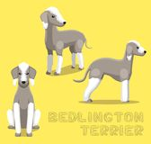 Illustrazione di vettore del fumetto del bedlington terrier del cane Immagini Stock Libere da Diritti