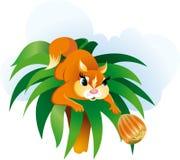 Illustrazione di vettore del fumetto dello scoiattolo Immagine Stock