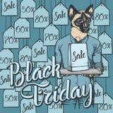 Illustrazione di vettore del gatto su Black Friday Fotografia Stock Libera da Diritti