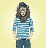 Illustrazione di vettore del leone dei pantaloni a vita bassa Fotografia Stock
