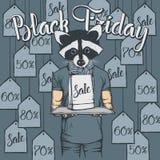 Illustrazione di vettore del procione su Black Friday Fotografia Stock
