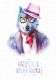 Illustrazione di vettore del ritratto del lupo in occhiali da sole Fotografia Stock Libera da Diritti
