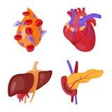 Illustrazione di vettore del simbolo dell'organo e di anatomia Raccolta di anatomia ed icona medica di vettore per le azione royalty illustrazione gratis
