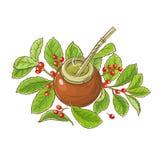 Illustrazione di vettore del tè del compagno illustrazione di stock