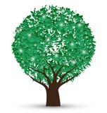 Illustrazione di vettore dell'albero Immagini Stock Libere da Diritti